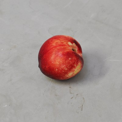 Nectarines blanches Provence