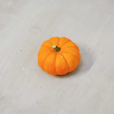 Courge jack be little...