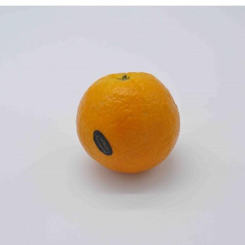 Oranges espagnoles